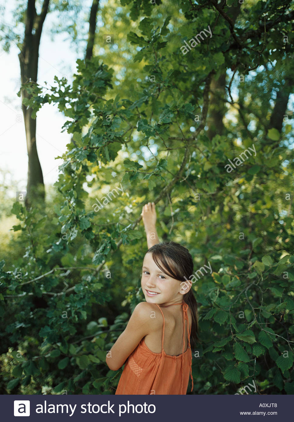 Girl reaching up to tree branch - Stock Image