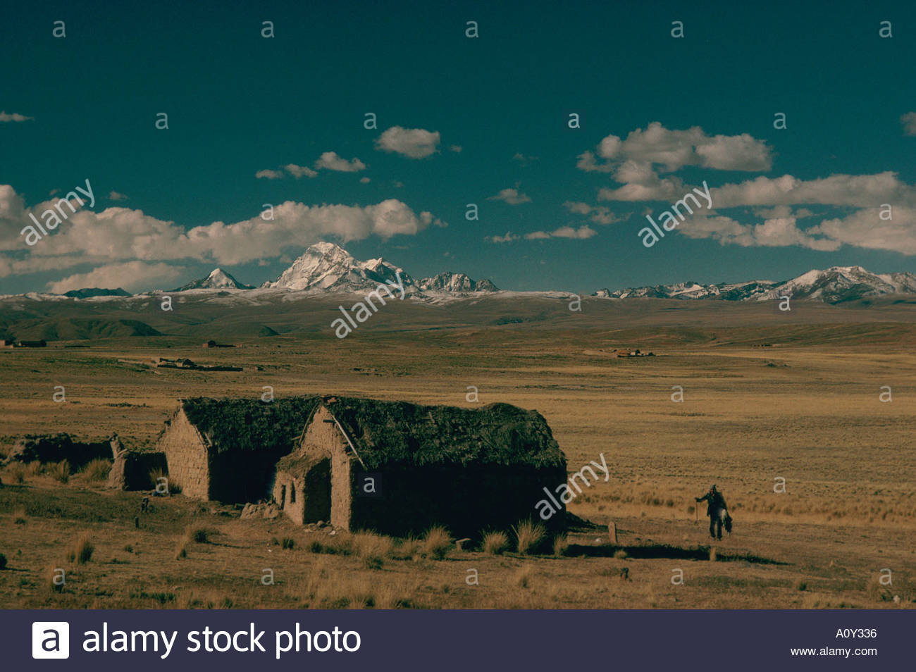 BOLIVIA near La Paz altiplano 13000 feet high thatch roof adobe houses A lonely Aymara peasant In background the Cordillera Real - Stock Image