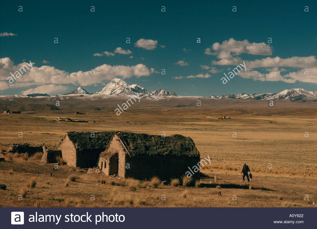 BOLIVIA near La Paz altiplano 13000 feet high thatch roof adobe houses and lonely Aymara peasant in background Cordillera Real - Stock Image