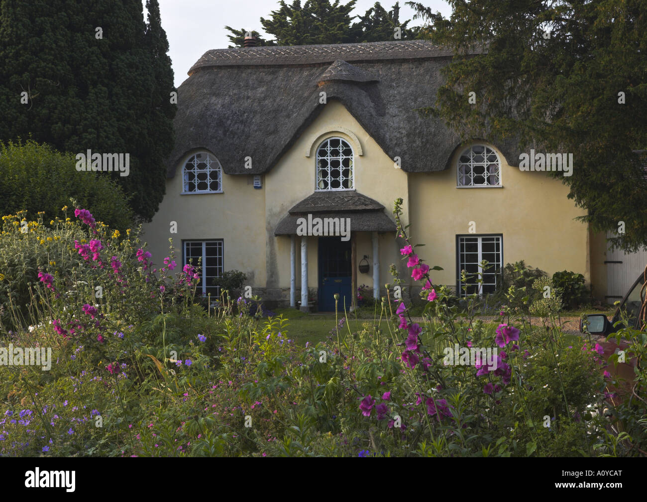 An unusual thatched cottage on Church Lane Wool - Stock Image
