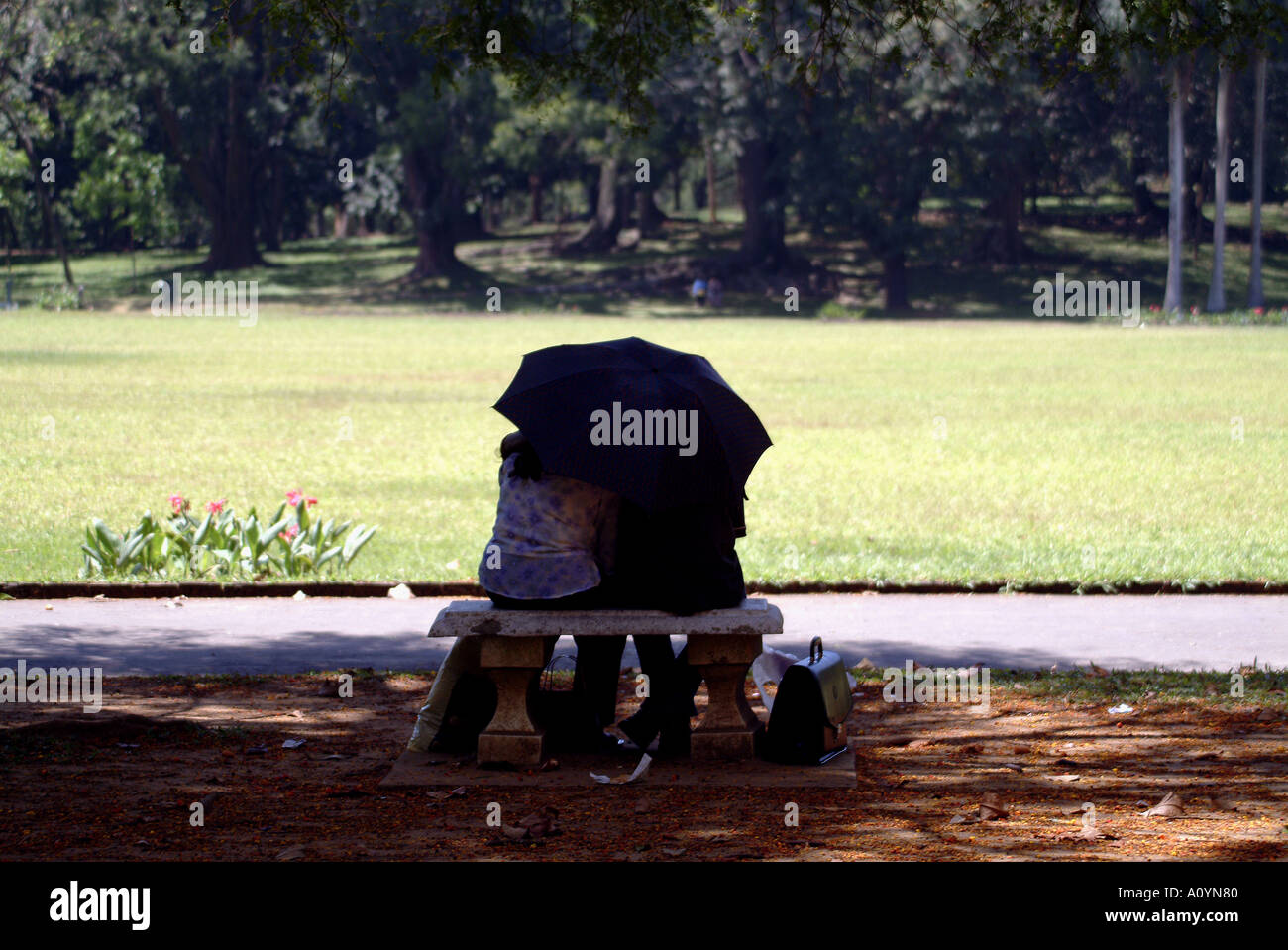 Park Bench Love Old Style Stock Photo 3295615 Alamy