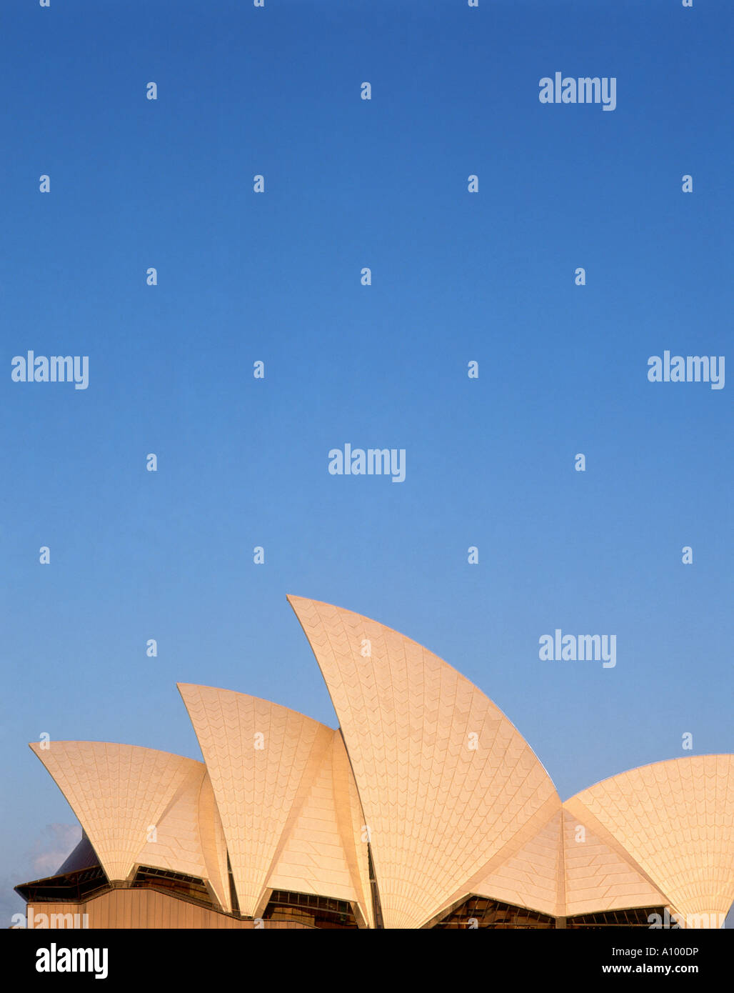 Side view of Sydney Opera House with its complex of roofs shaped like billowing sails designed by Danish architect - Stock Image
