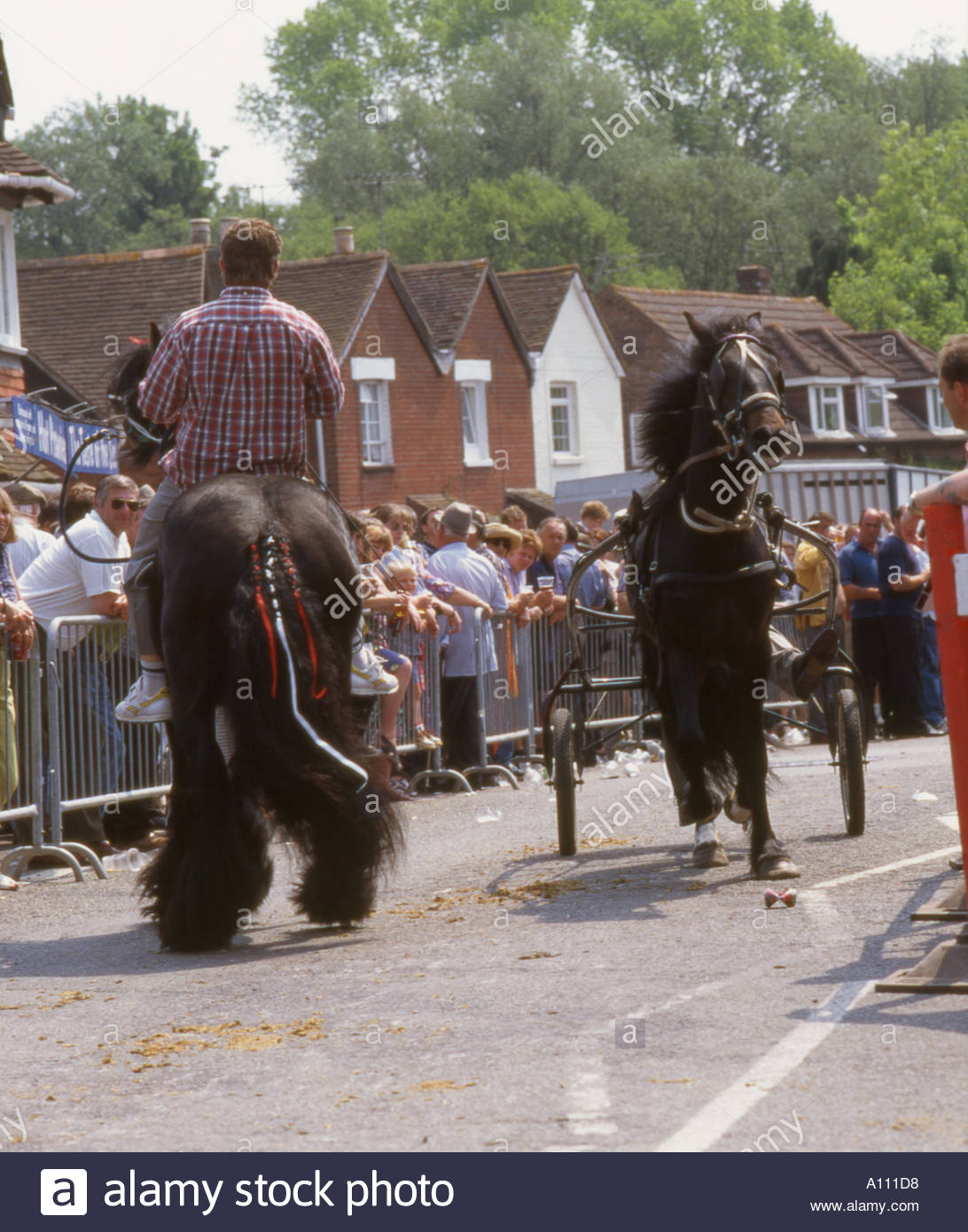 Horse Fair Wickham Hants - Stock Image