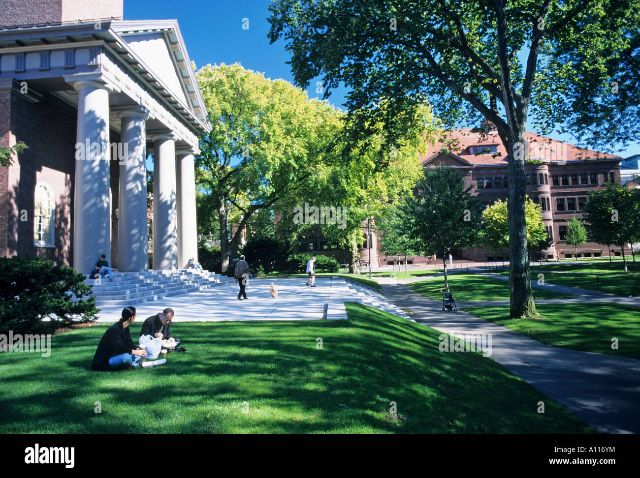 Students On The Lawns Outside Widener Memorial Library At Harvard University
