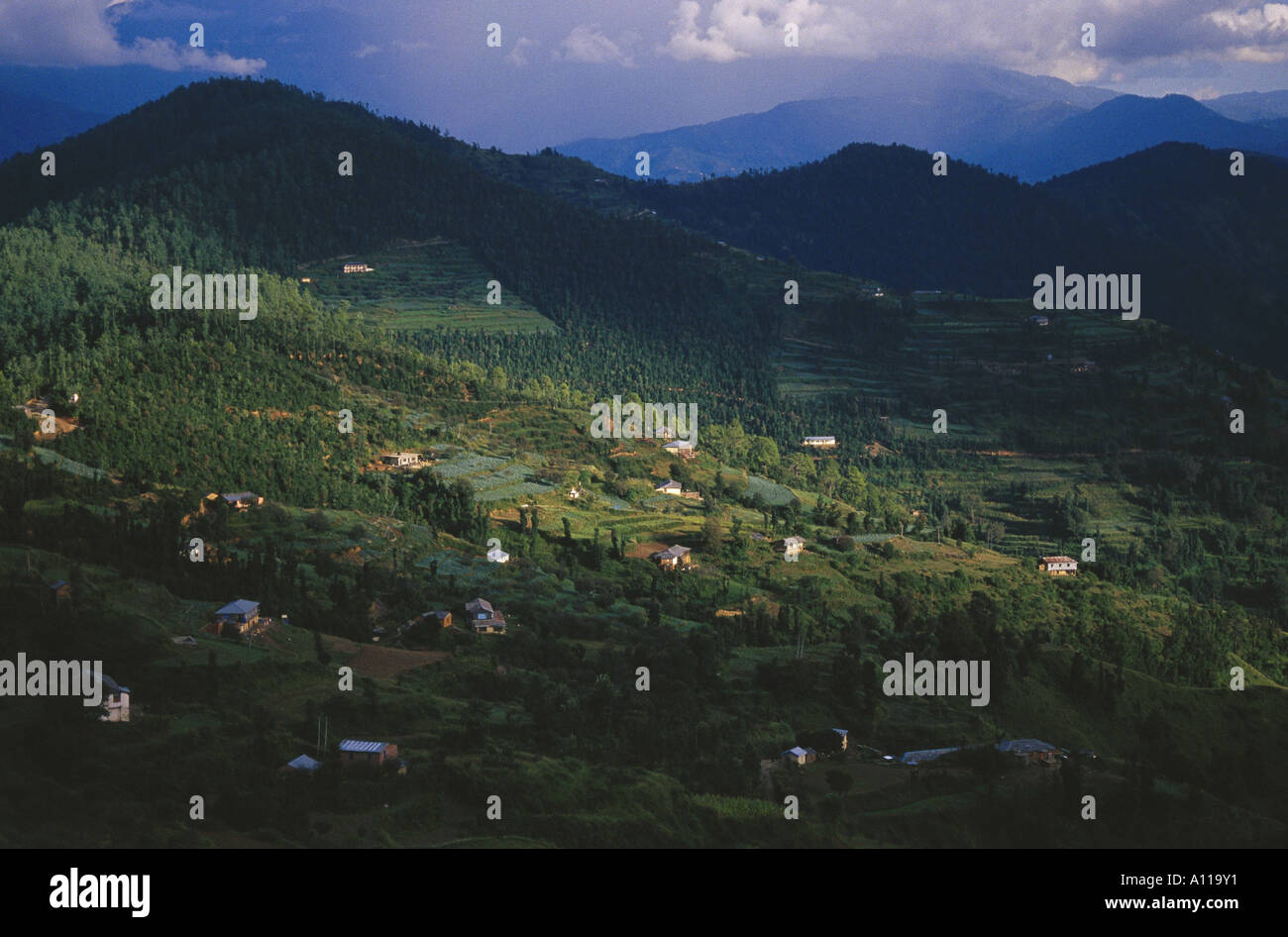 View from Cedar Heights Resorts at Koti near Simla Himachal Pradesh India - Stock Image