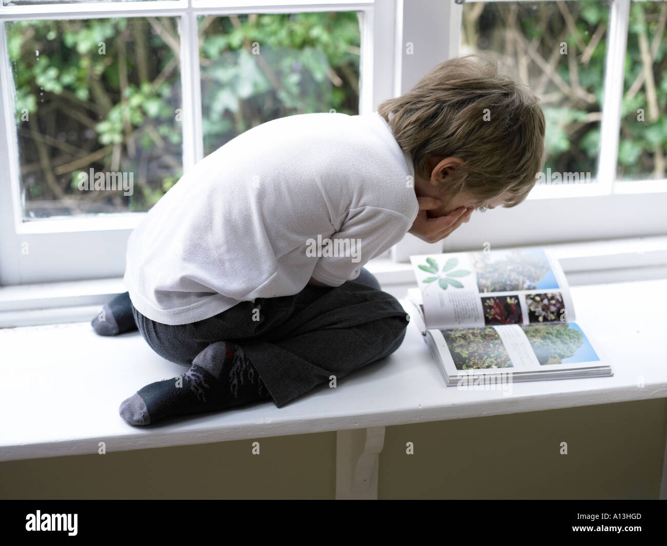 young boy in white polo shirt reading a book on the windowsill alone - Stock Image