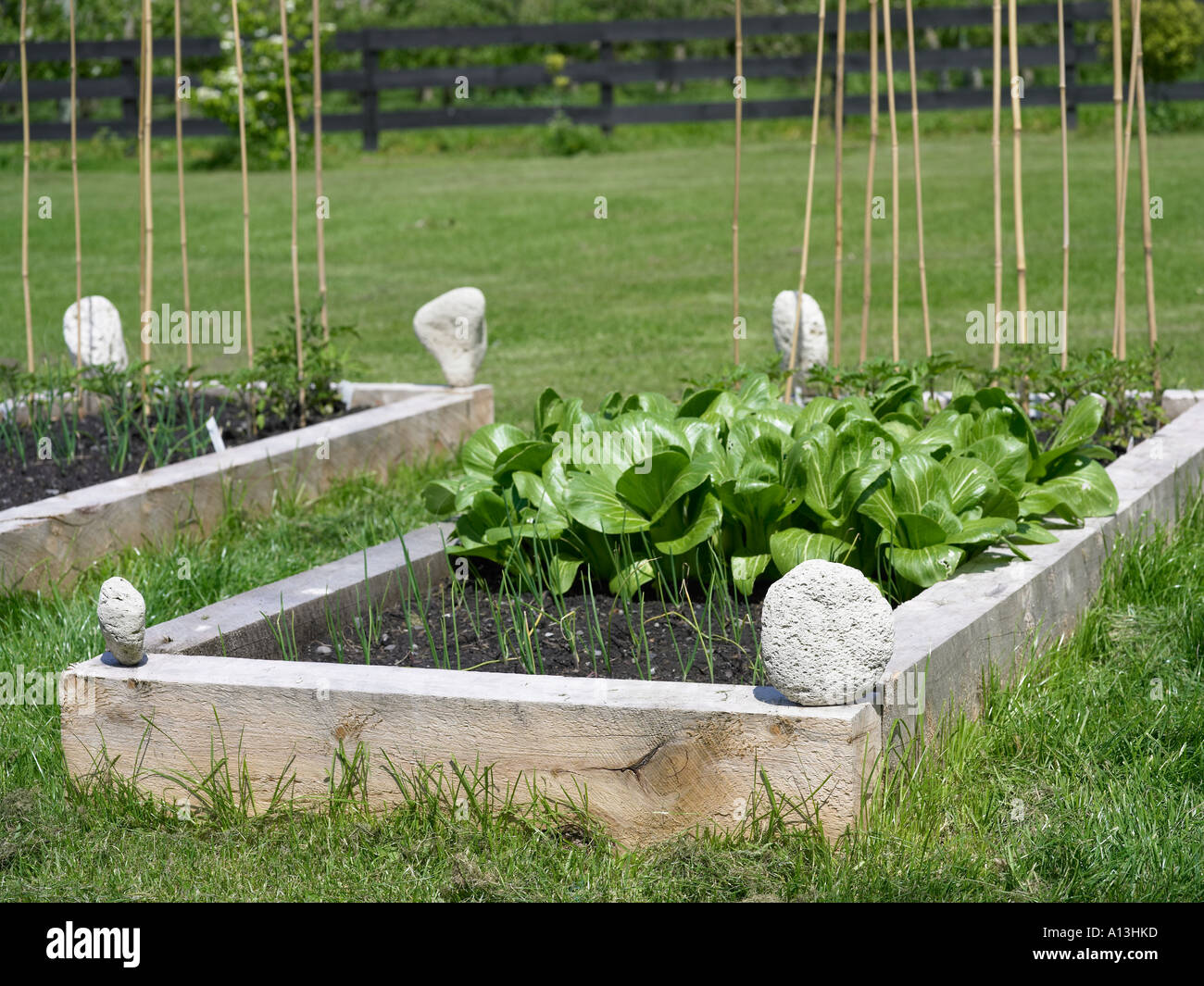 Raised Vegetable Bed With Pumice Stone Edges Stock Photo 5789692