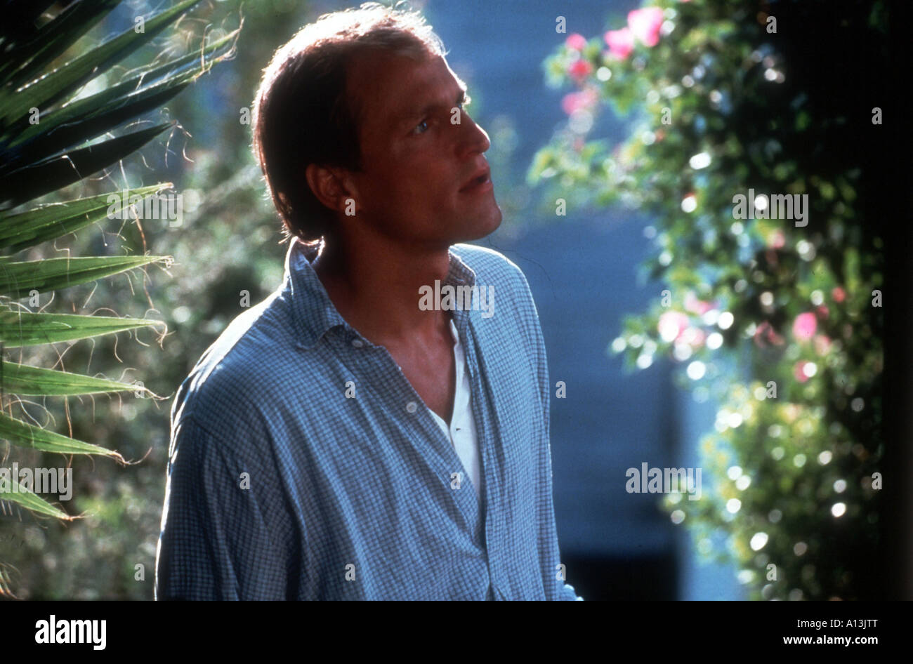 Indecent Proposal Year 1993 Director Adrian Lyne Woody Harrelson - Stock Image