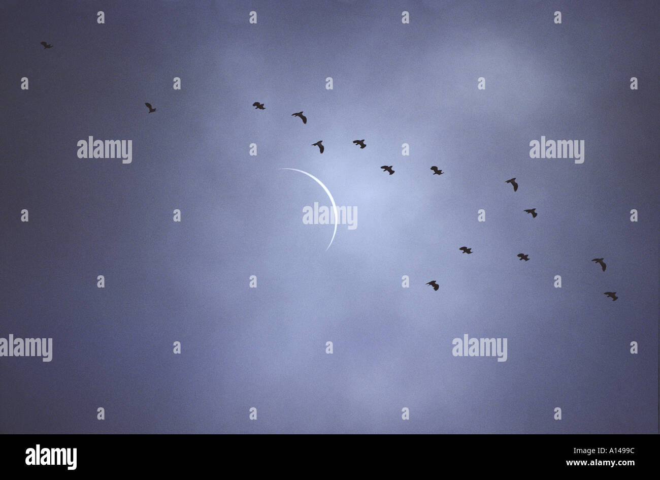 Solar eclipse partially obscured by thin cloud France August 1999 - Stock Image