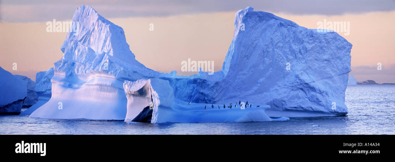 Iceberg with chinstrap penguins Antartica - Stock Image