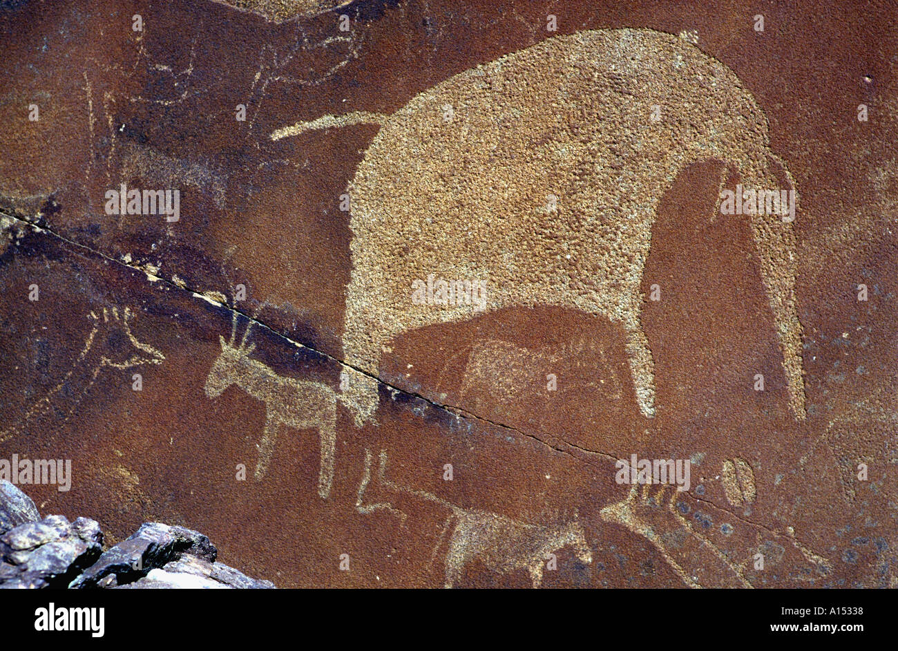 Ancient rock carvings of animals twyfelfontein namibia africa