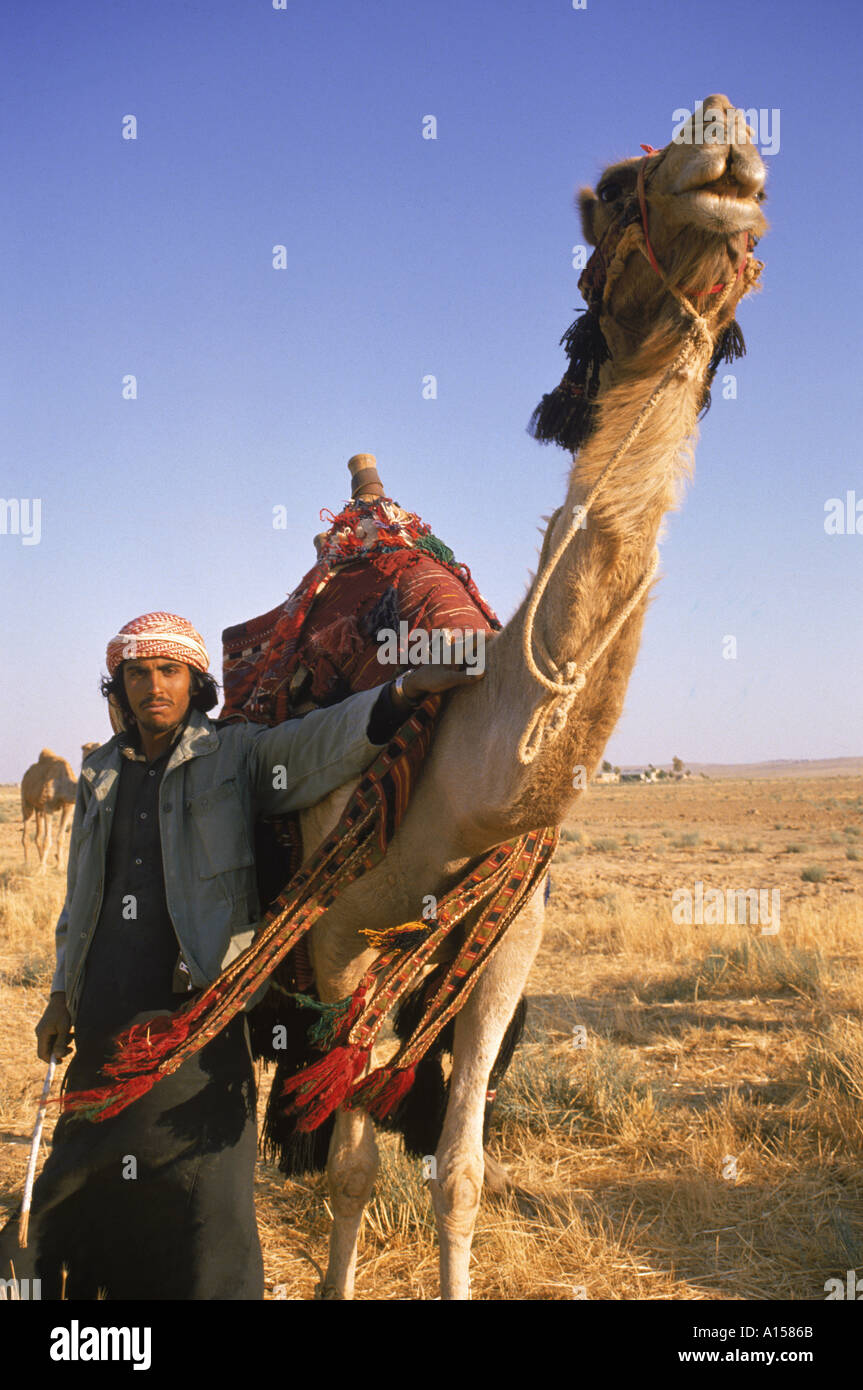 Portrait of man wearing traditional robe and headcloth with a western jacket stood with his camel Jordan Middle East K Gillham - Stock Image