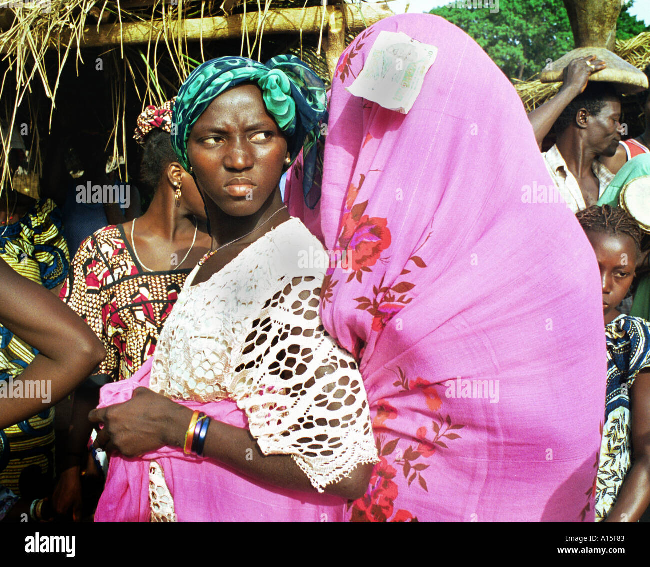 A 13 year-old Muslim bride in the West African country of Guinea Bissau is covered in a pink veil in the last of a three day - Stock Image
