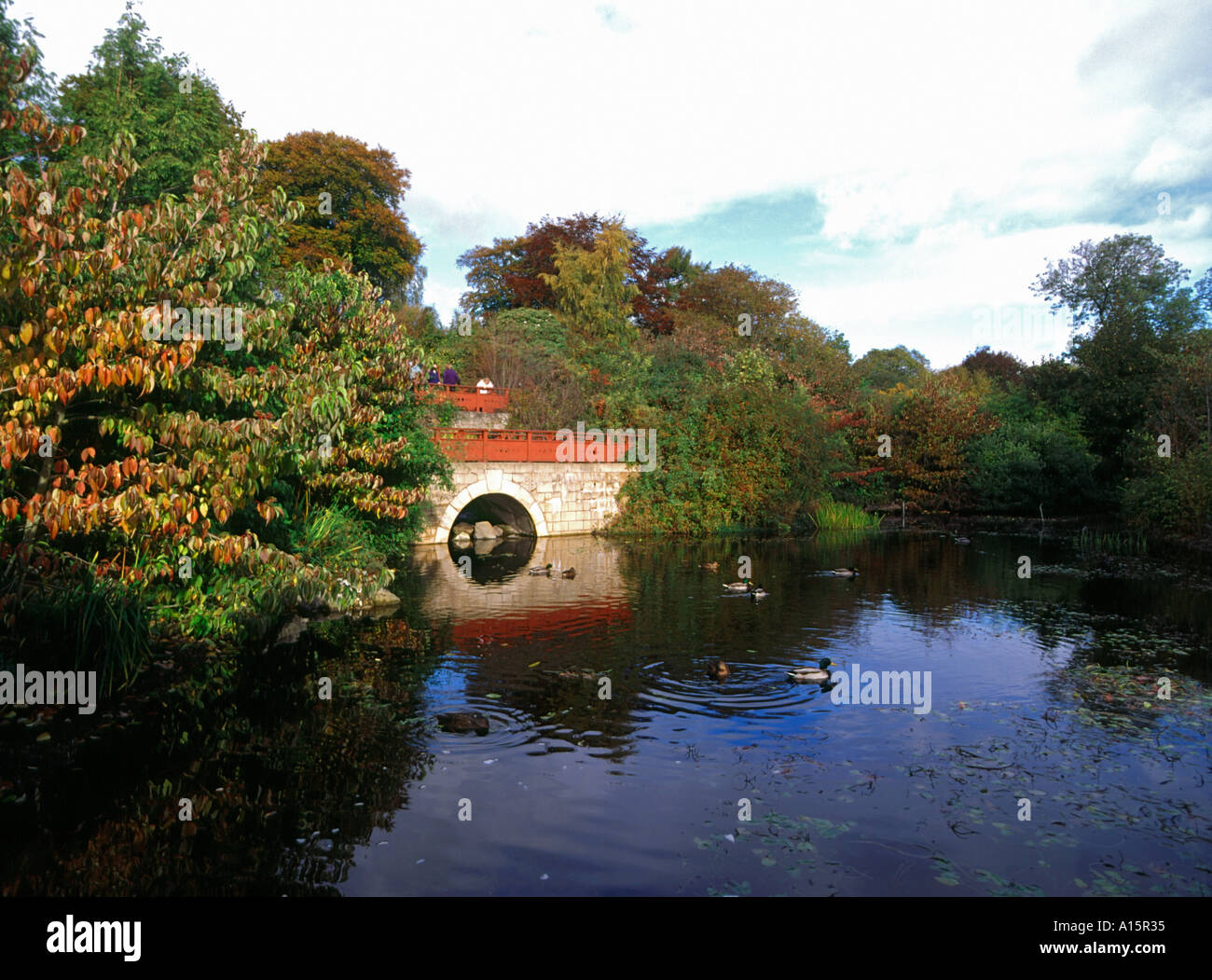 dh ROYAL BOTANIC GARDEN EDINBURGH Chinese garden bridge people child ...