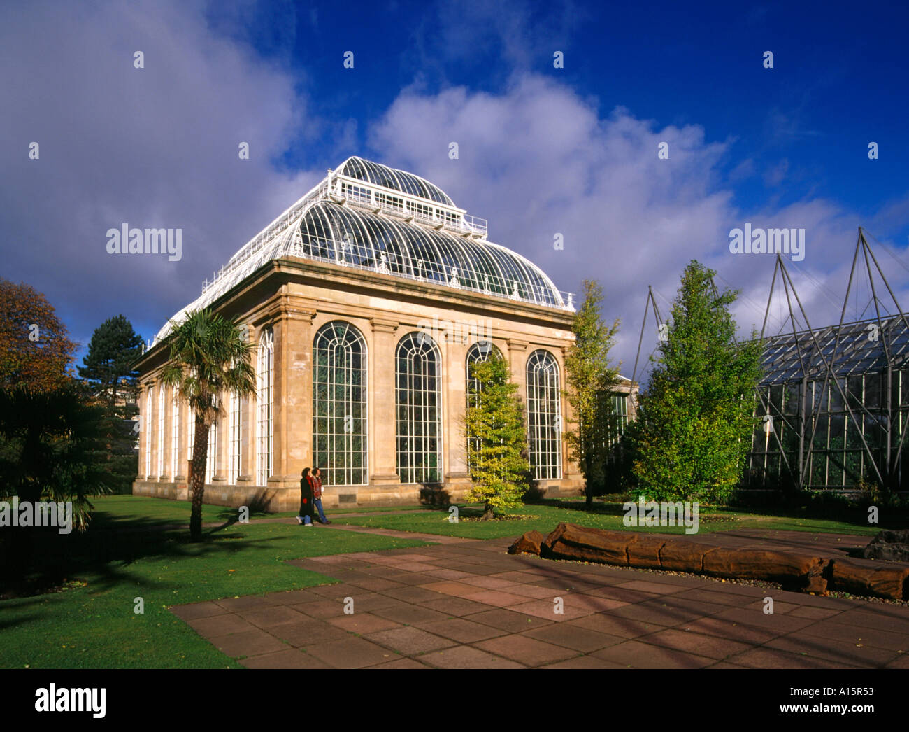 dh Botanical palm house ROYAL BOTANIC GARDEN EDINBURGH Couple tourists glasshouse gardens people Scotland - Stock Image