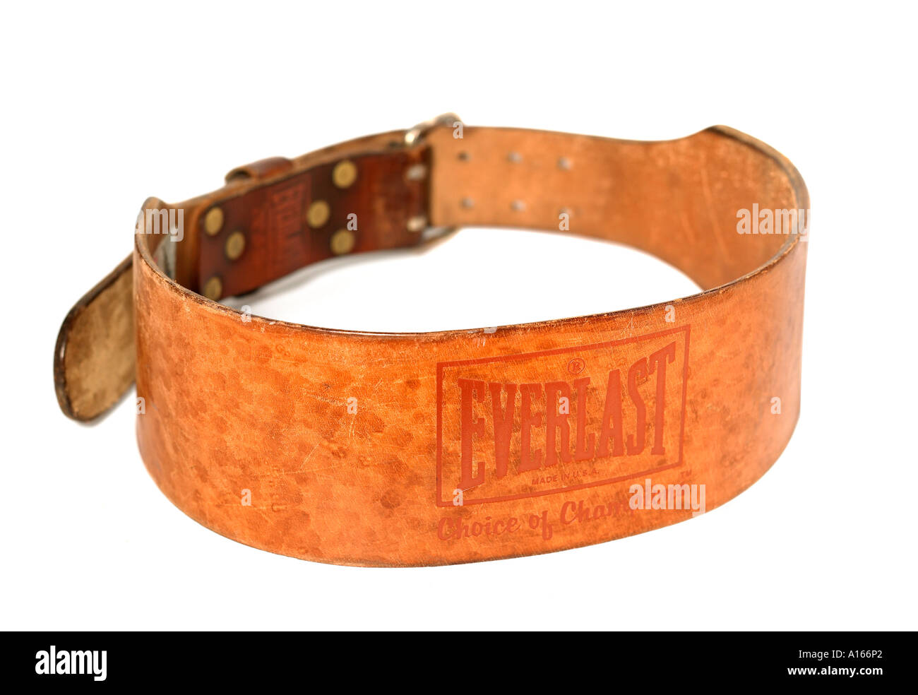Weight Belt - Stock Image