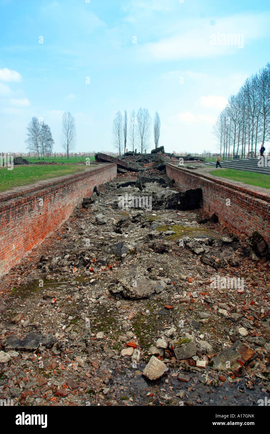The remains of the gas chambers at Auschwitz concentration camp, Birkenau, Poland. - Stock Image