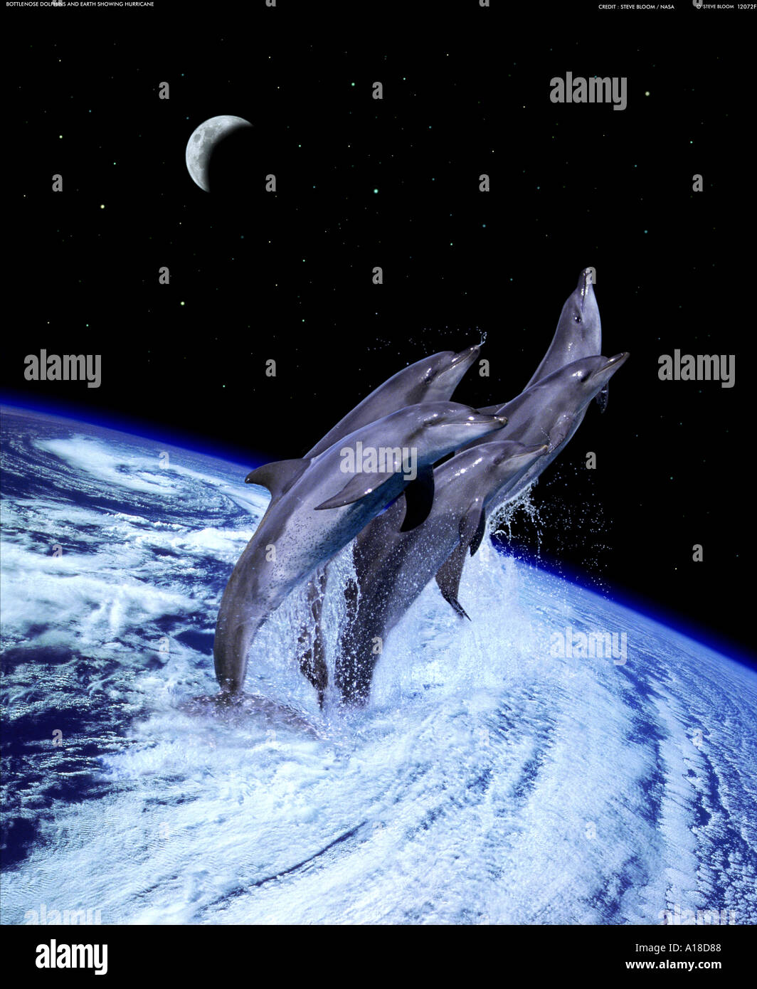 Dolphins leaping from a hurricane on earth - Stock Image