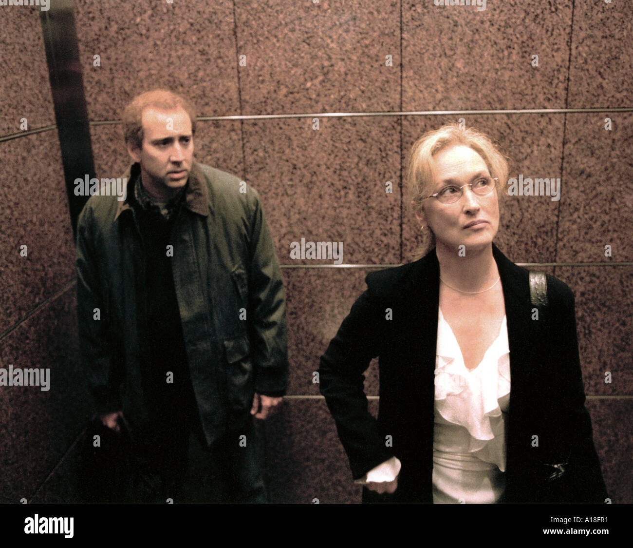 ADAPTION - Nicholas Cage and Meryl Streep - Stock Image