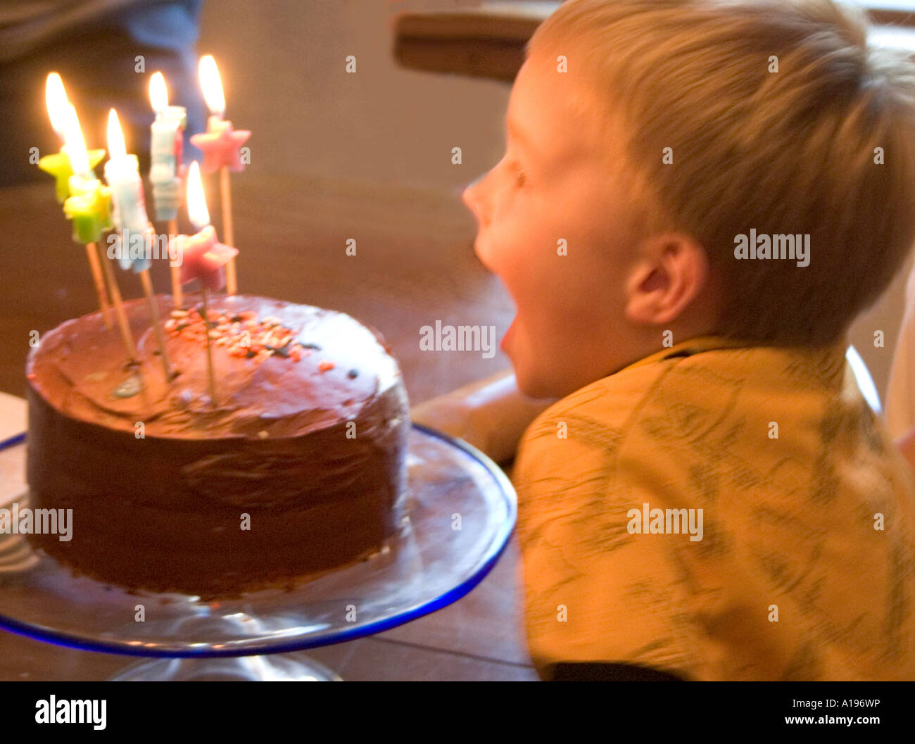 Five Year Old Boy Blowing Out Birthday Candles St Paul Minnesota MN USA