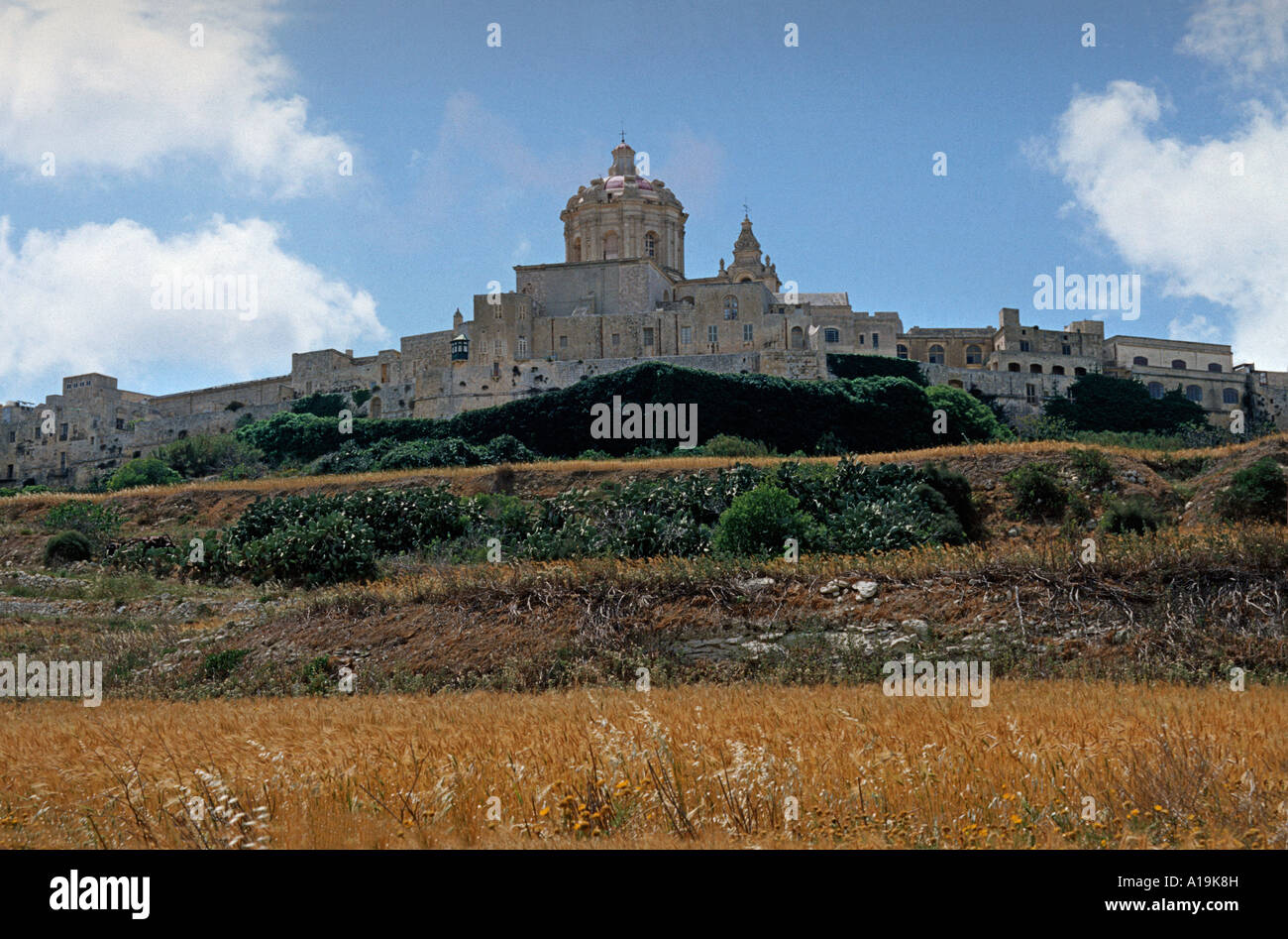 Historic Cathedral of Mdina viewed across fields MALTA Ancient walled european city devastated by an earthquake - Stock Image