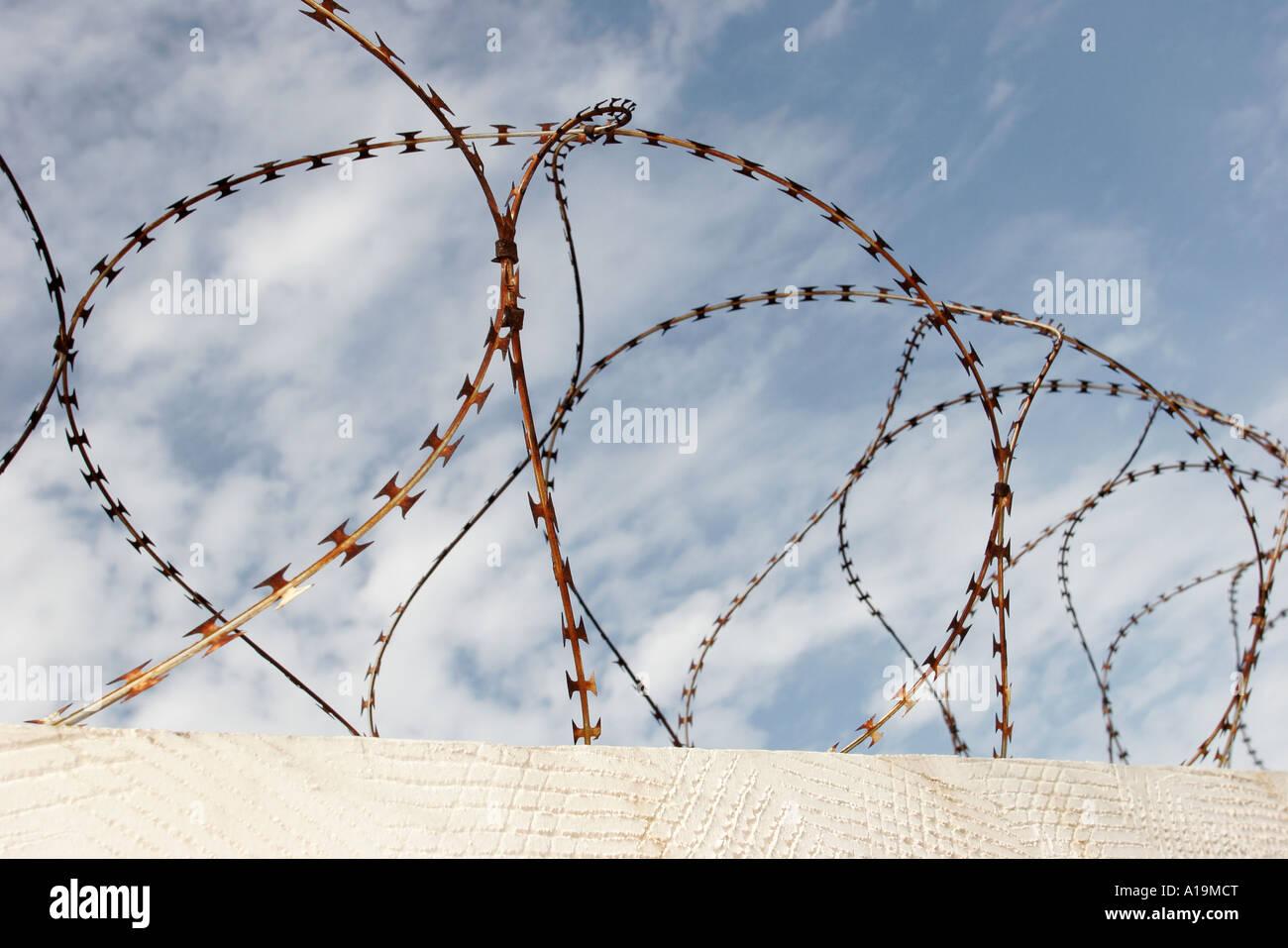 Barbed Wire In Miami - WIRE Center •