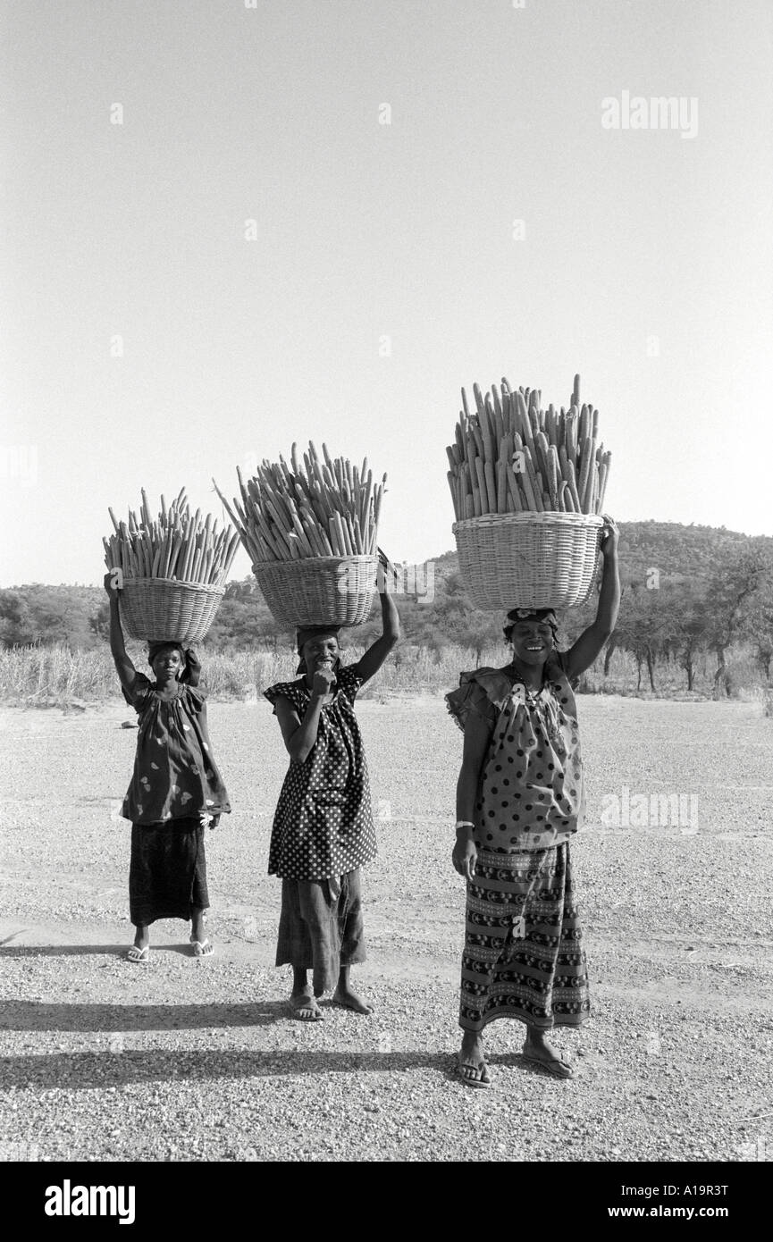 Women carrying millet. Mali Stock Photo