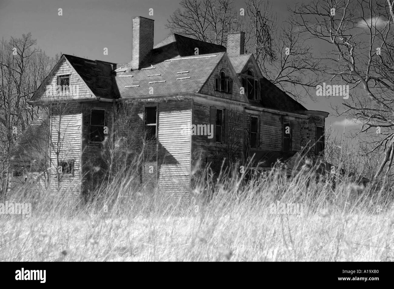 eerie abandoned country house with broken windows surrounded by