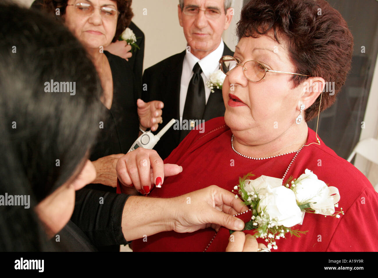 Brides Mother Stock Photos & Brides Mother Stock Images - Alamy