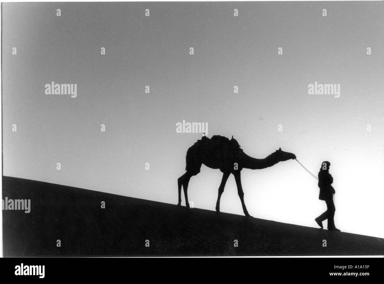 Bedouin man black and white stock photos images alamy