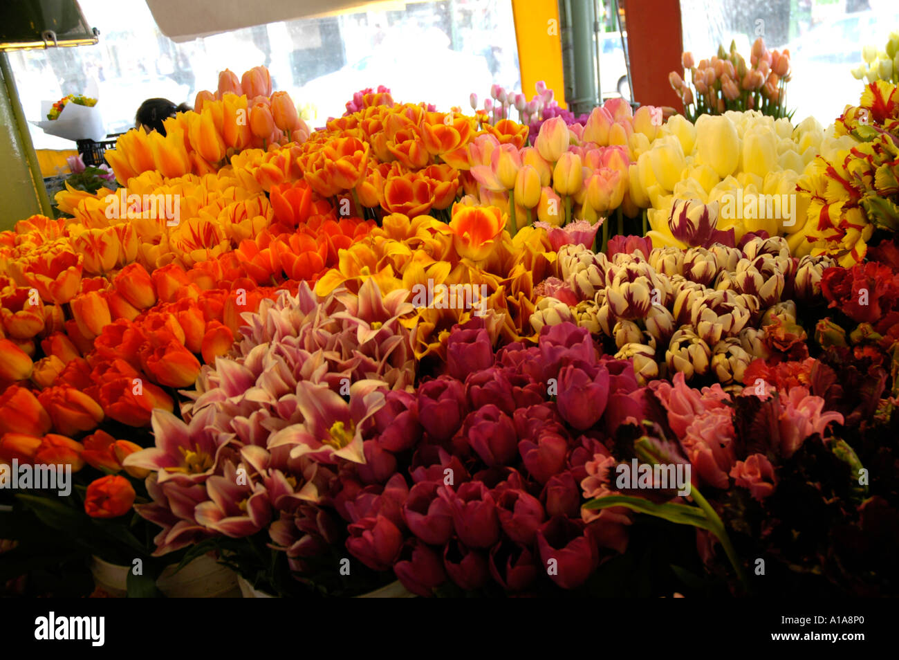 Flower stand at Pike s Place Market Seattle - Stock Image