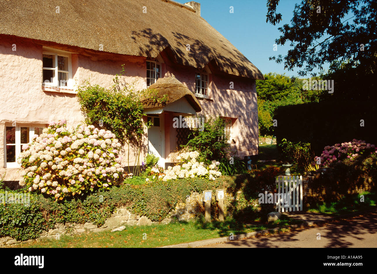 Country Cottage South Devon UK - Stock Image