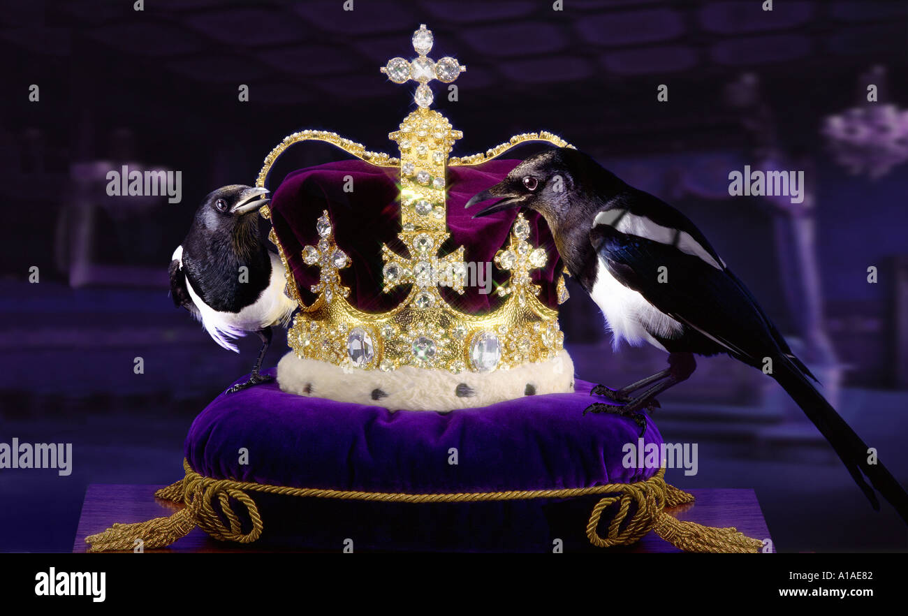 Thieving Magpies - Stock Image