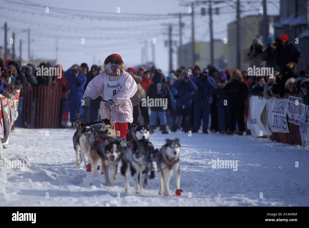 Susan Butcher sled dog musher Susan Butcher sled dog musher new images