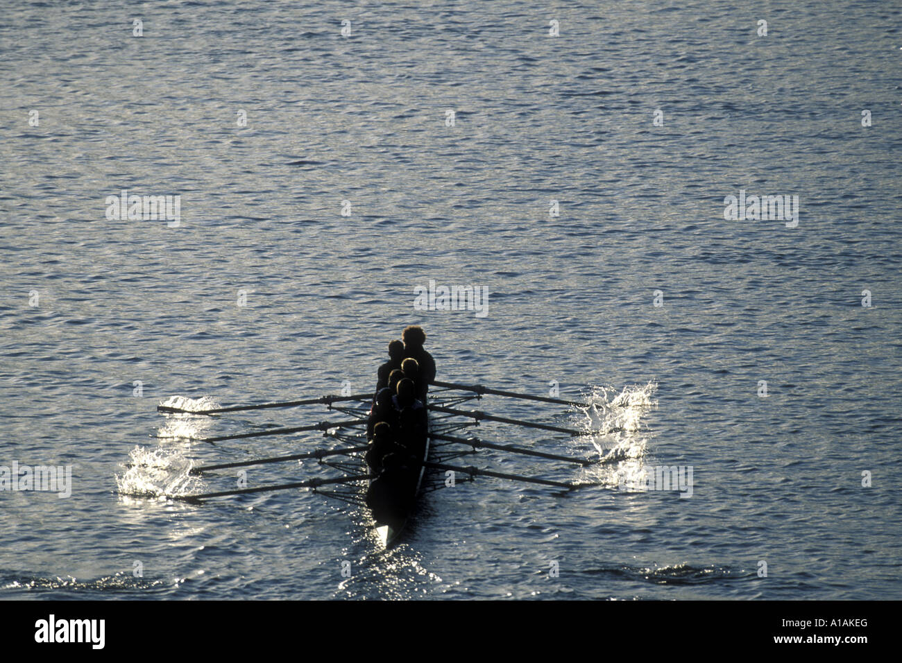 USA Washington Seattle Rowing team warms up at sunrise on Lake Union before Windermere Cup Race - Stock Image