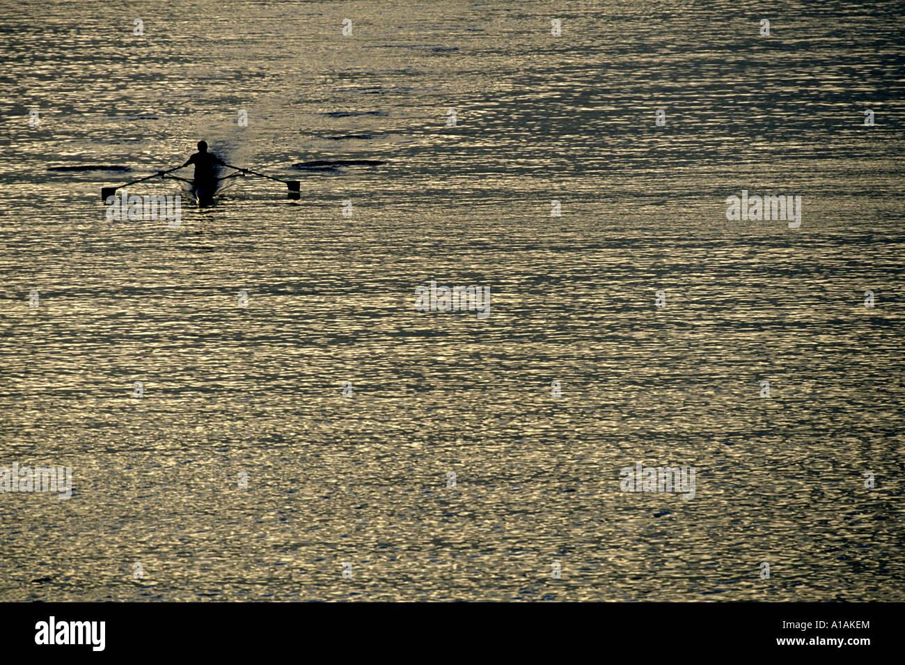 USA, Washington, Seattle, Rowing teams scull through Montlake Cut during Husky Invitational at dawn in Lake Union - Stock Image