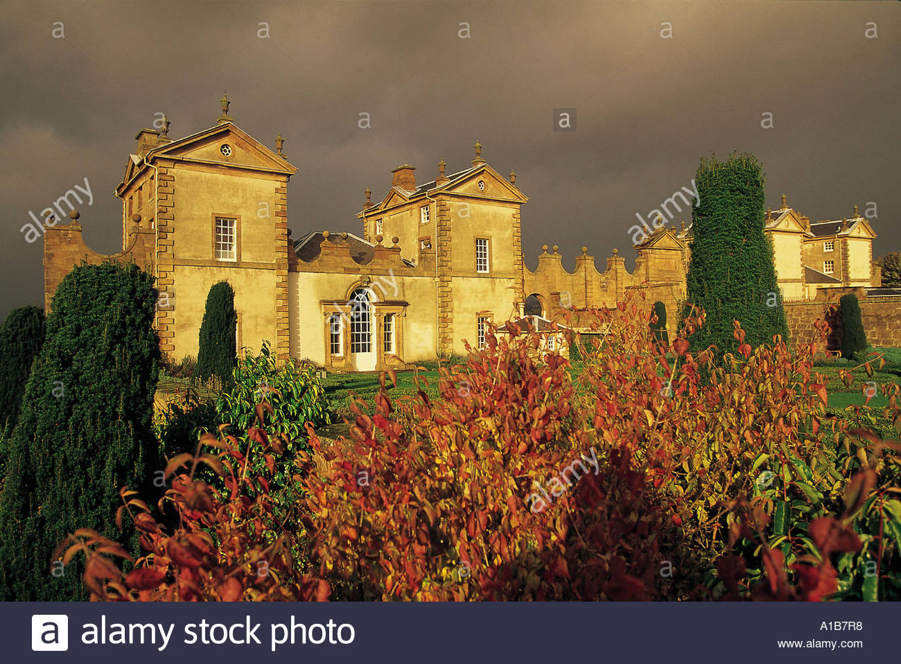 LOOKING OVER AUTUMNAL SHRUBBERY IN THE WALLED GARDEN OF CHATELHERAULT PART OF A 500 ACRE COUNTRY PARK SOUTH LANARKSHIRE - Stock Image