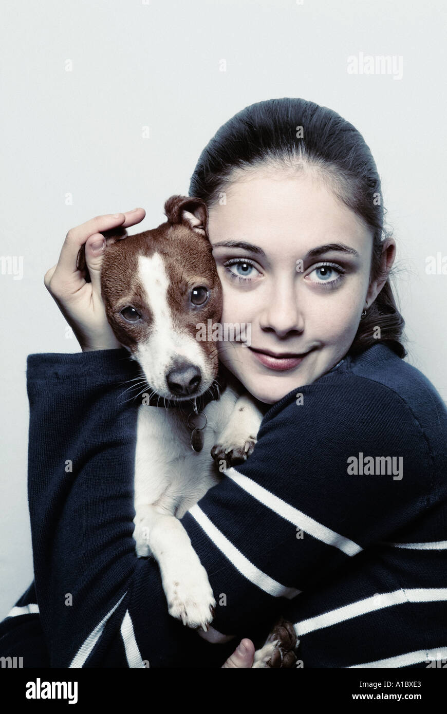 young girl holding a jack russell puppy dog - Stock Image