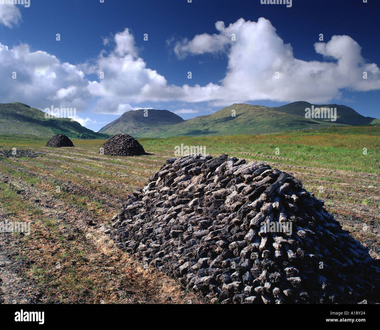 IE - CO. GALWAY: Cutting the Peat in the Inagh Valley of Connemara - Stock Image