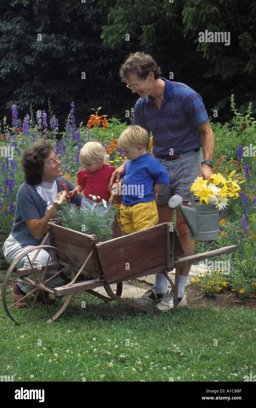 QUICK REFERENCE PLANTING GUIDE. 1. Light/Sun Exposure - Full to partial sun. 2. USDA Hardiness Zones - Not winter hardy. Will thrive from spring to fall in all zones. 3. Planting Distance - 2 to 3 feet apart in ground. One plant per 16 inch or larger container.