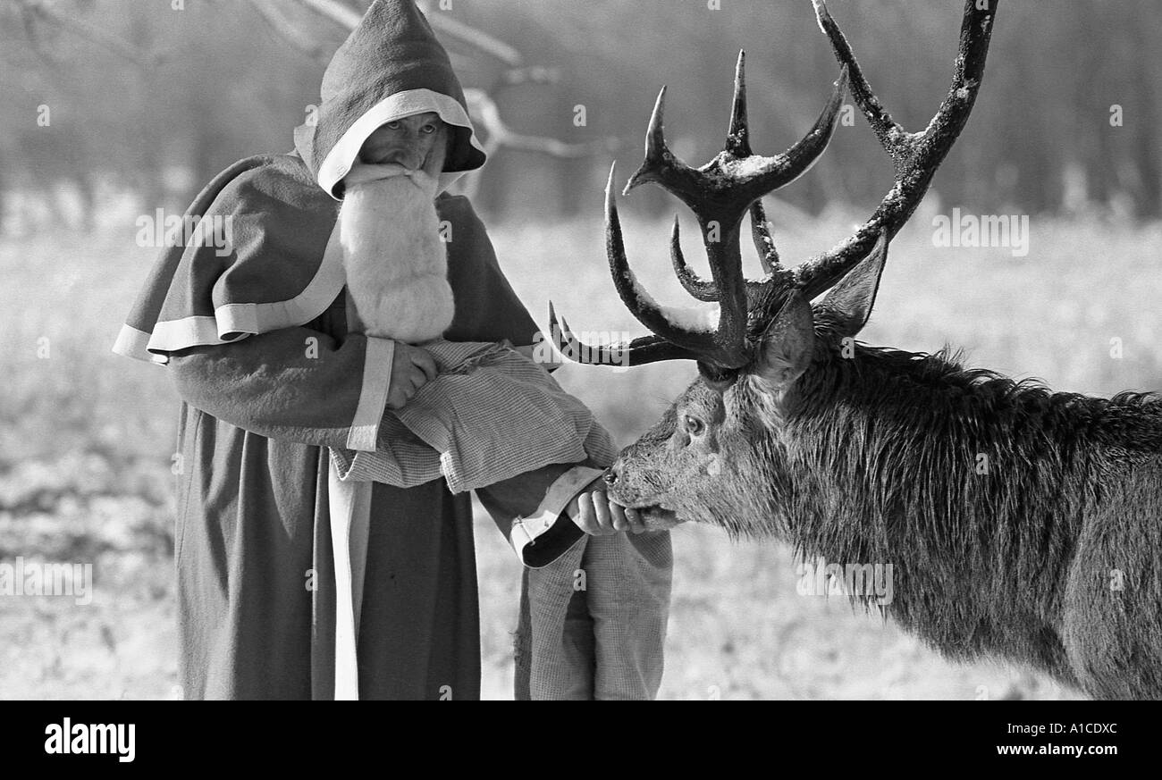 Man dressed as santa clause feeding a deer stag in the snow for a publicity picture