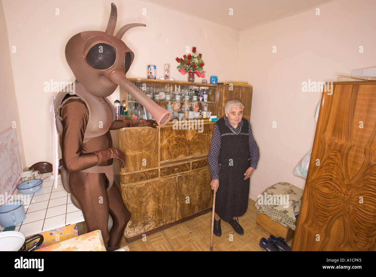Old woman and a tall man in mosquito costume in an old kitchen - Stock Image
