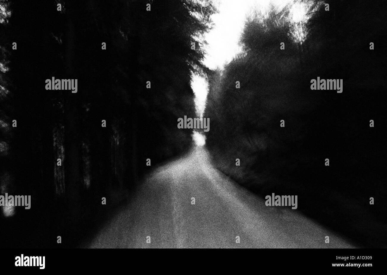 Moving on gravel road trough forest - Stock Image