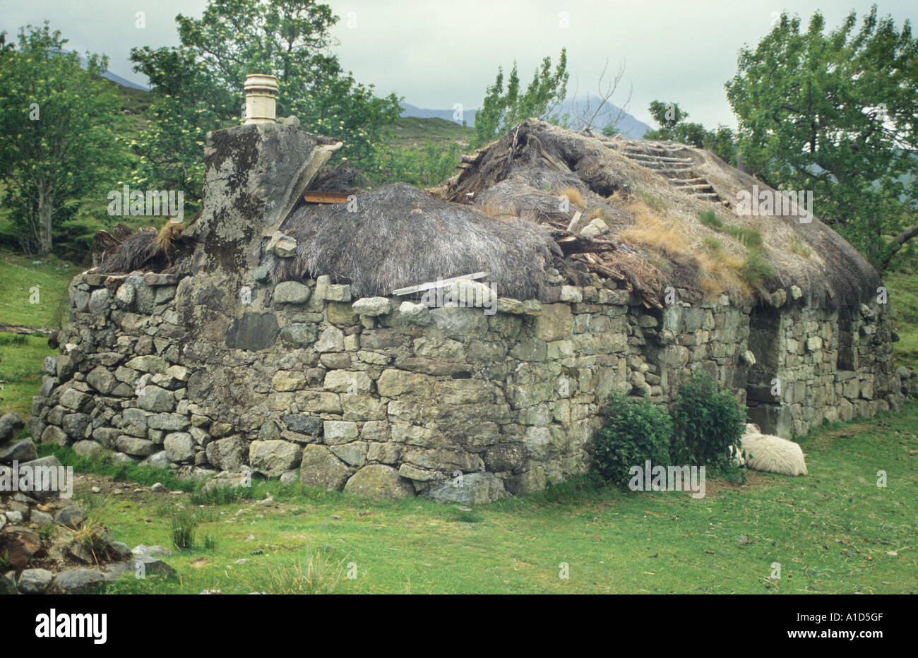 Abandoned Derelict Blackhouse Thatched Roof Ruin Stone