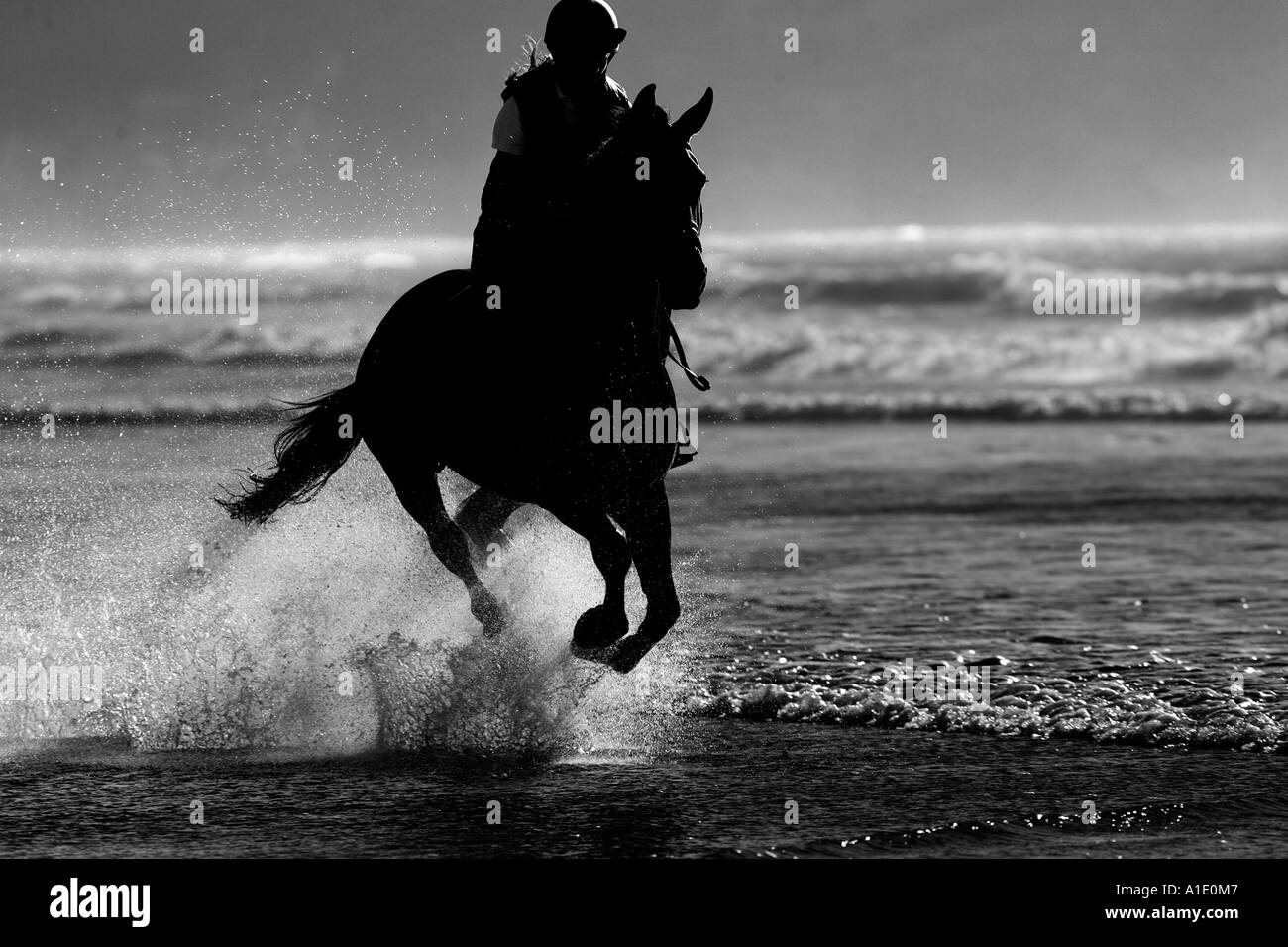 Silhouette young woman rideshorse on Broad Haven Beach Pembrokeshire Wales United Kingdom - Stock Image