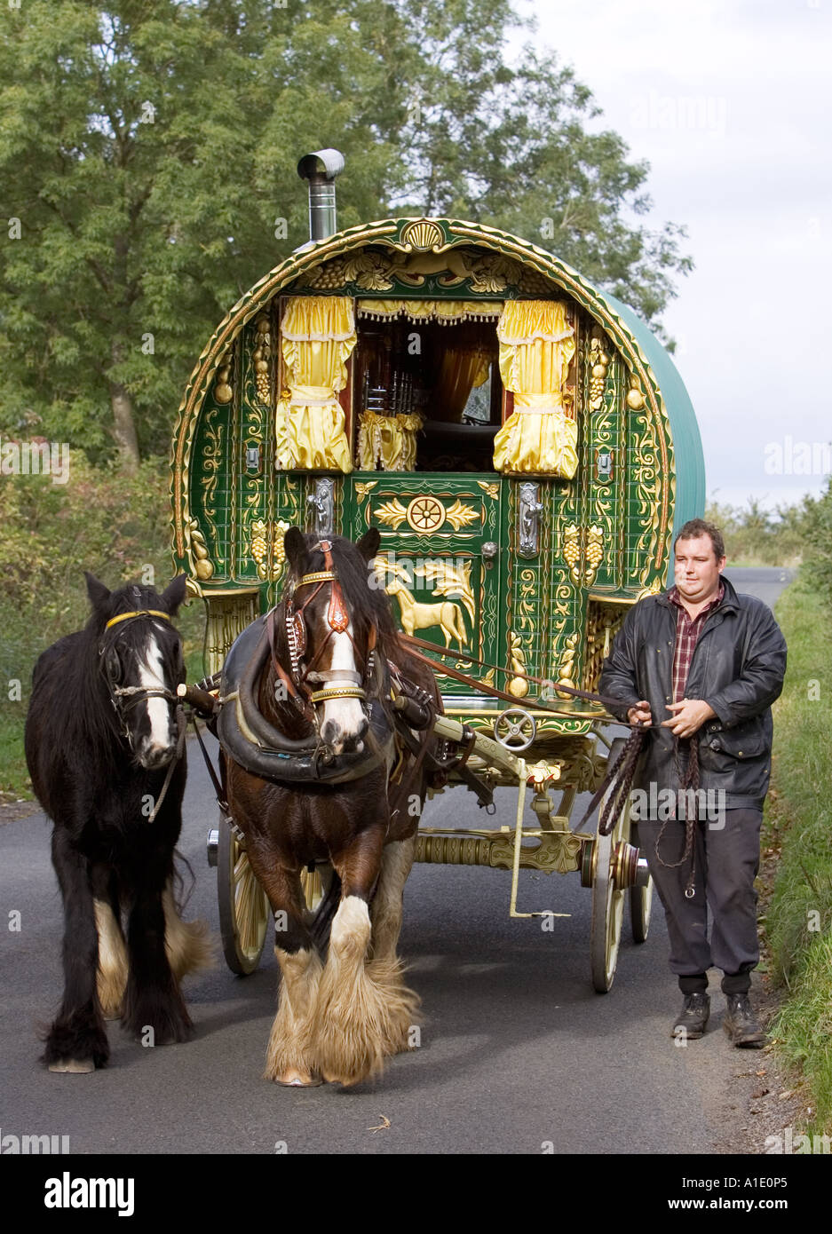 Shire horses pull 100 year old gypsy caravan through country lanes Stow On The Wold Gloucestershire United Kingdom - Stock Image