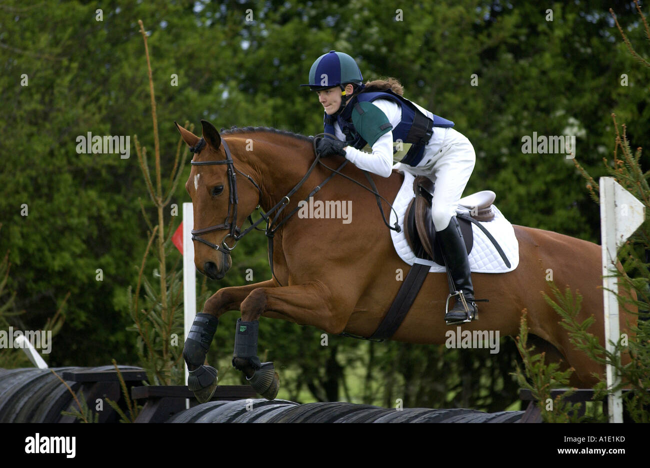 Young Woman Rides A Dark Bay Horse In An Eventing Competition United Stock Photo Alamy