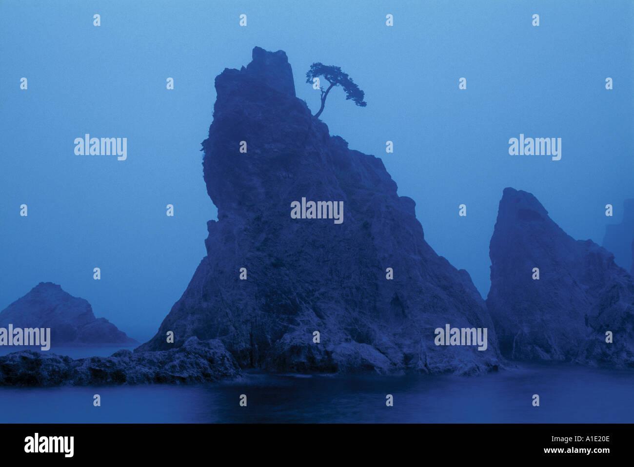 Sanno Iwa rocks, Iwate Ken, Honshu, Japan - Stock Image