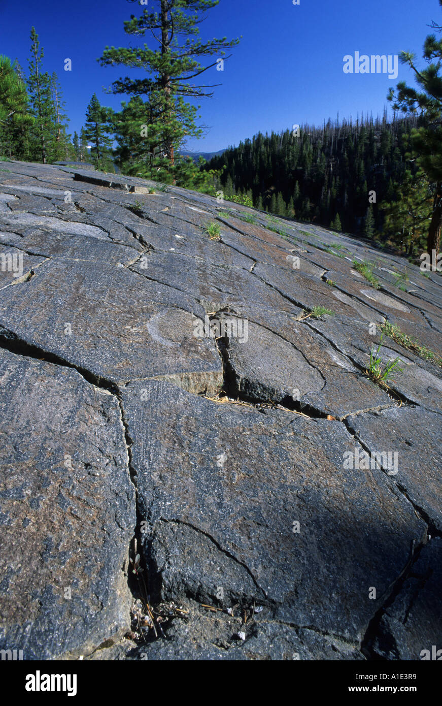 Glacially polished basalt columns Devils Postpile National Monument, California, USAStock Photo
