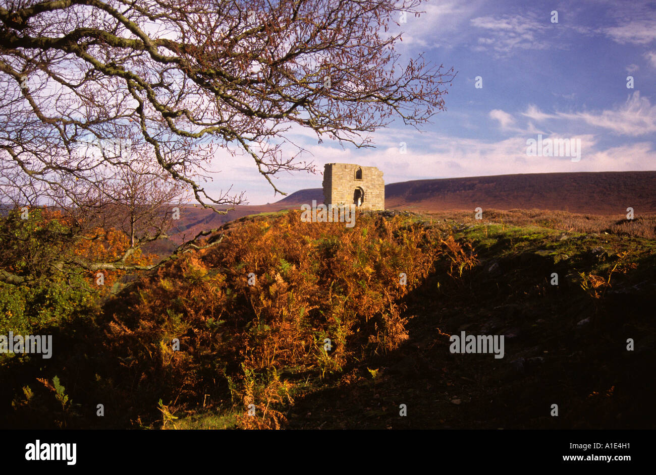 Skelton Tower North York Moors North Yorkshire England UK United Kingdom GB Great Britain - Stock Image